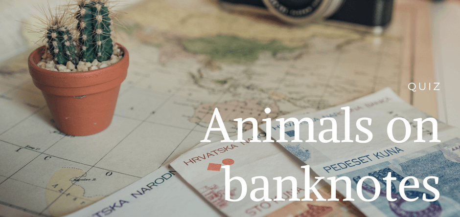 Animals on banknotes